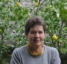 prof. Daria Visintini
